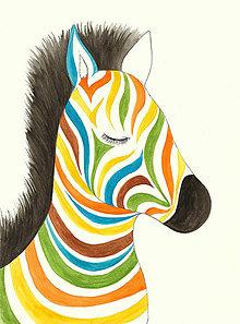 Magnetky - Zebra s veselými pruhmi, magnetka - 10011610_