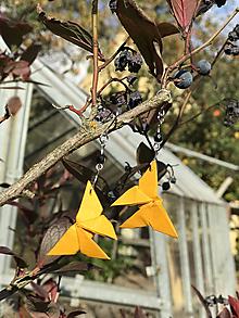 Náušnice - Podzimní kompozice - 10013533_