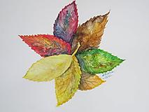 Obrazy - Jesenné lístie / Autumn leaves - Originál - 10013912_