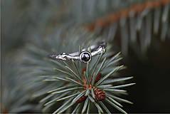 Prstene - Větvičkový s černým diamantem v bílém zlatě - 10018518_