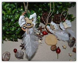 Dekorácie - Vianočné ozdoby - 3 oriešky s pierkom - 10027092_