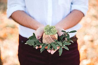 Nádoby - Drevený kvetináč - Cosinus - 10028306_
