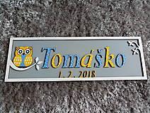 Dekorácie - Drevená tabuľka sovička k narodeniu dieťaťa s vlastným menom a dátumom OWL 3 - 10028990_