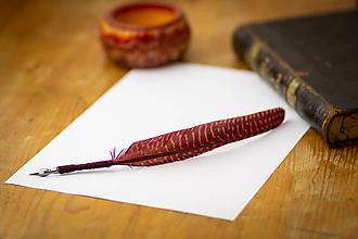 Drobnosti - pierko na písanie - brko na písanie - 10039732_