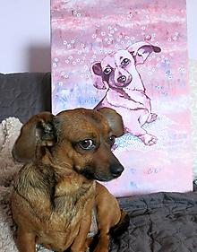 Obrázky - Portrét zvieratka podľa fotky - 10048336_