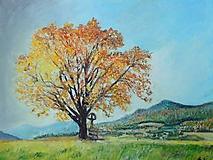 Obrazy - strom pri kríži...  - 10047325_