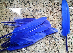 Suroviny - Kačacie perie modré - 10049093_