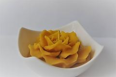 Svietidlá a sviečky - Rozkvitnutá sviečka v keramike - 10051186_