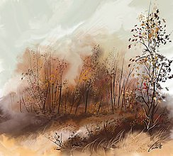 Obrazy - Ticho! jeseň - 10057735_