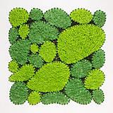 Obrazy - Machový obraz 60x60 (bledá breza) - 10058077_