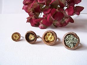 Prstene - Prstene z prírody vzišli - 10076125_