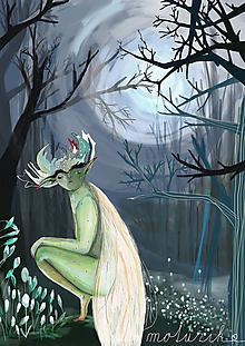 Kresby - V lese - 10084207_