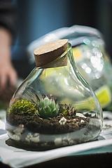 Nádoby - Mini záhradka v skle - 10087233_