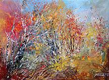 Obrazy - Podzimní zákoutí - orig. akryl - 10090558_