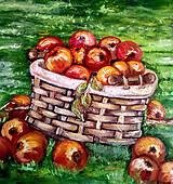 Obrazy - Jablká v košíku - 10105822_