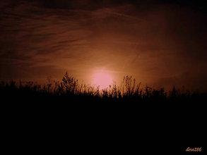 Fotografie - Utíchol les, osirel háj... - 10113353_