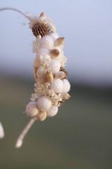 Ozdoby do vlasov - Čelenka zimná biela - 10117280_