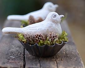 Dekorácie - Vtáčik v hniezde - 10114827_