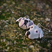 Náušnice - Argentínska doga - náušnice AG 925/1000 podľa fotografie - 10122828_