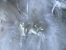 Dekorácie - Anjelské krídla - 10128779_