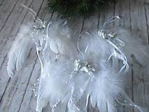 Dekorácie - Anjelské krídla - 10128784_