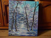 Obrazy - Kúzlenie zimy - 10134162_