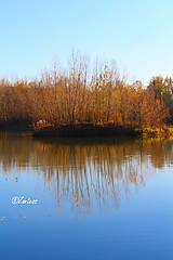 Fotografie - Jazerný ostrov - 10140277_