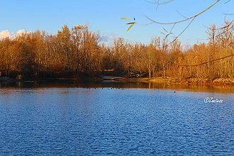 Fotografie - Fotografia... Kačky na jazere - 10140306_