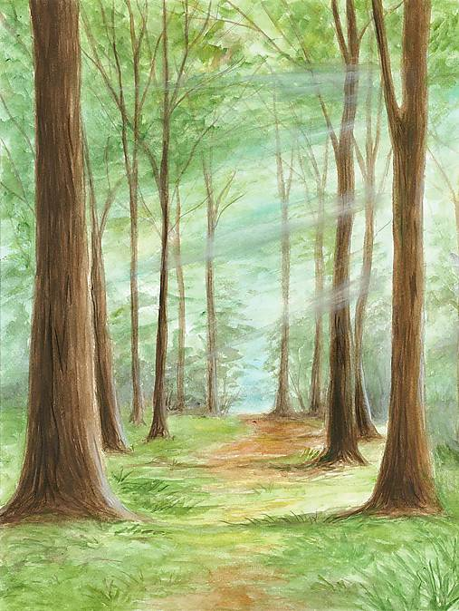 Na prehchádzke lesom, magnetka