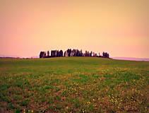 """Fotografie - """"Les je báseň, ktorú píše Zem pre Nebo"""" - 10160386_"""