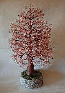 Dekorácie - obrovský stromček šťastia - 10160424_