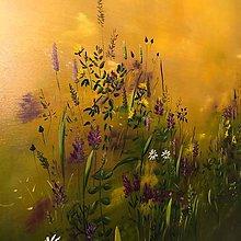 Obrazy - Letná lúka - 10160293_