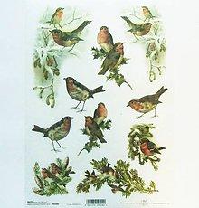Papier - Ryžový papier na decoupage -A4-R200 - Vianoce, sýkorka - 10162955_