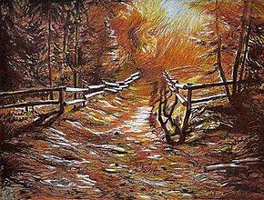 Obrazy - Light in Lines - 10164821_