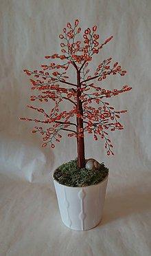 Dekorácie - Stromček šťastia  oranžový - 10164803_