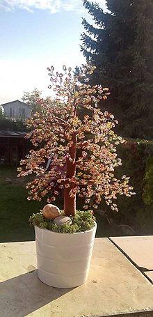 Dekorácie - Stromček šťastia  pestrofarebný - 10165117_
