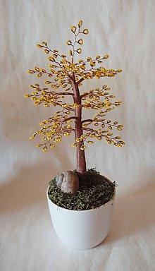 Dekorácie - stromček šťastia - 10165149_