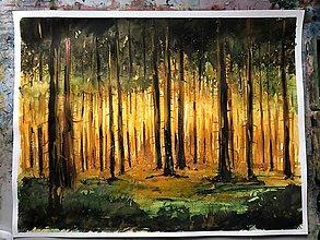 Obrazy - Akvarelový obraz Svetla v hustom lese 50x65cm - 10175978_