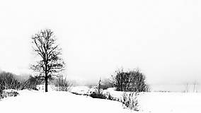 Obrazy - ZIMNÁ KRAJINA fotoplátno 60x40cm (C b&w vysoký kontrast) - 10182355_