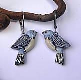 Náušnice - Keramické náušnice - Vtáčiky - 10188494_