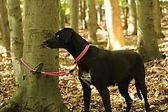 Pre zvieratká - Lanový obojok AKAI // vyberte si farbu - 10197476_