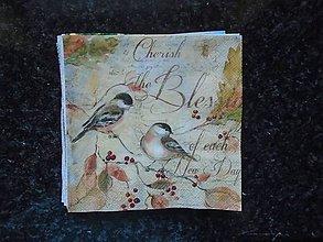 Papier - vtáčiky - 10195212_