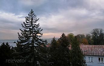 Fotografie - Takmer vianočne - 10200750_