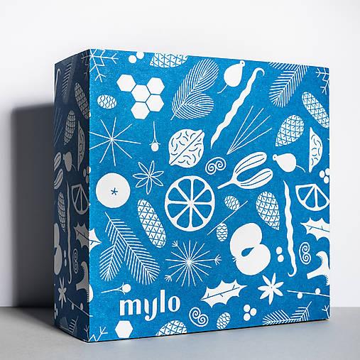 Vianočná darčeková krabička