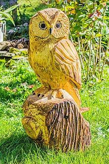 Dekorácie - záhradné doplnky drevorezba sova 55 cm - 10211433_