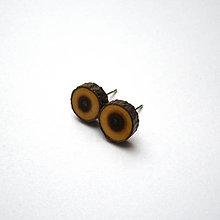 Náušnice - Z hlošinovej mini halúzky - 10210389_