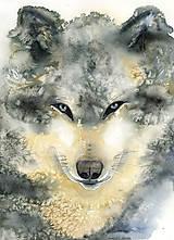 - Vlk, akvarel výtlačok (print) (A3 (30 x 42 cm)) - 10211015_