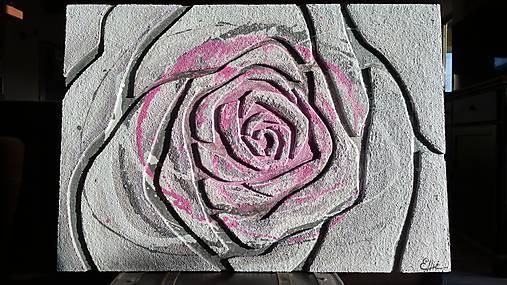 Ruža 100x70cm