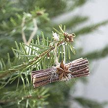 Dekorácie - Ozdoba na stromček Raždie a badián - 10219805_