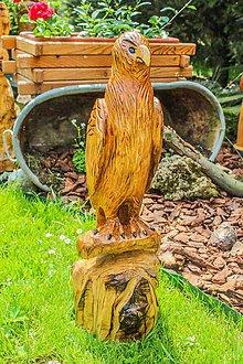 Dekorácie - záhradná dekorácia drevorezba jastrab 60 cm - 10216552_
